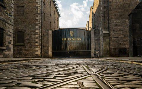 Free Classifieds County Dublin Locanto